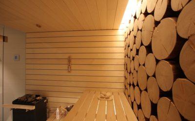 Sauna mit Holzrugel